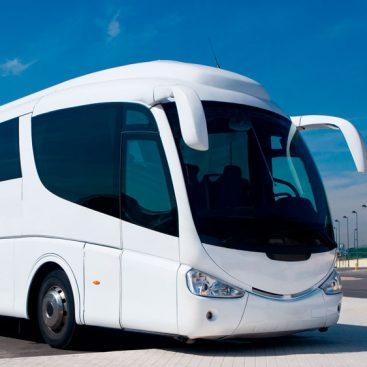Carnet de autobús D Madrid